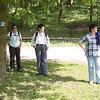 2009-04-26-Viaduktwanderung-1-Teil-029