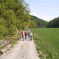 2009-04-26-Viaduktwanderung-1-Teil-045