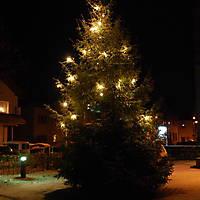 2009-12-27 Weihnachtswanderung-015