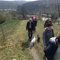 2018-04-15-Schmetterlingsweg-004
