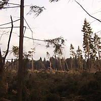 Kyrill-Bodental-2007-001