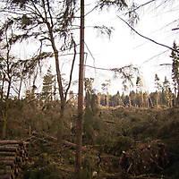 Kyrill-Bodental-2007-003