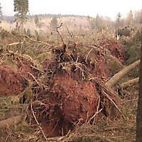 Kyrill-Bodental-2007-005