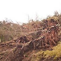Kyrill-Bodental-2007-012