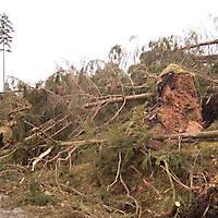 Kyrill-Bodental-2007-013