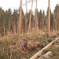 Kyrill-Bodental-2007-014