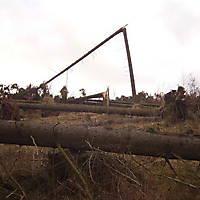 Kyrill-Bodental-2007-015