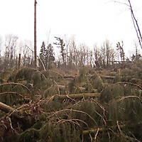 Kyrill-Bodental-2007-016