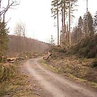Kyrill-Bodental-2007-017
