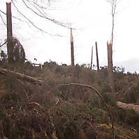 Kyrill-Bodental-2007-019