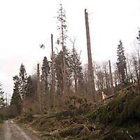 Kyrill-Bodental-2007-020