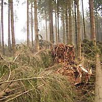 Kyril-Emderwald-2007-006