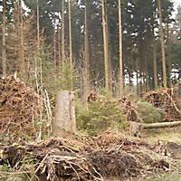 Kyril-Emderwald-2007-009