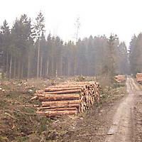 Kyril-Emderwald-2007-013