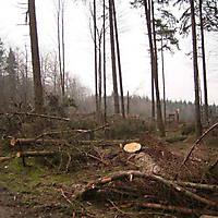 Kyril-Emderwald-2007-015