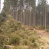 Kyril-Emderwald-2007-019