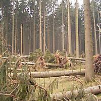 Kyril-Emderwald-2007-022
