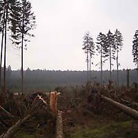 Kyril-Emderwald-2007-023