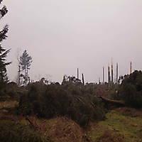 Kyril-Emderwald-2007-029