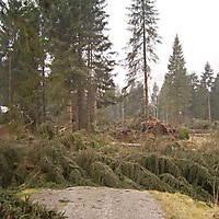 Kyril-Emderwald-2007-034