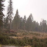 Kyril-Emderwald-2007-035