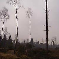 Kyril-Emderwald-2007-036