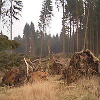 Kyril-Emderwald-2007-037