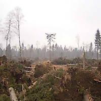 Kyril-Emderwald-2007-040