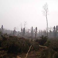 Kyril-Emderwald-2007-042