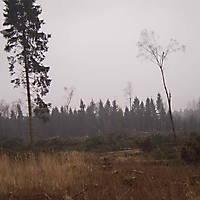 Kyril-Emderwald-2007-045