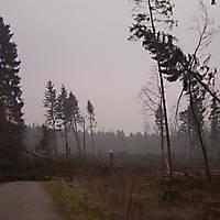 Kyril-Emderwald-2007-047