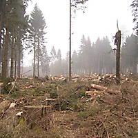 Kyril-Emderwald-2007-048