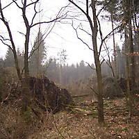 Kyril-Emderwald-2007-049