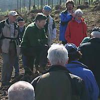 Foersterwanderung-22-04-07-035