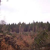 Sturm-Kyril-2007-002