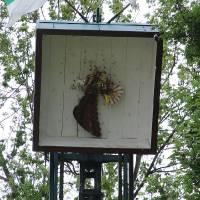 03. Vogelschießen